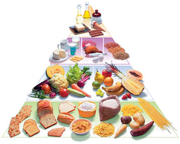 piramide_alimentar